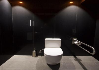 Negro stellar Duschwandplatten